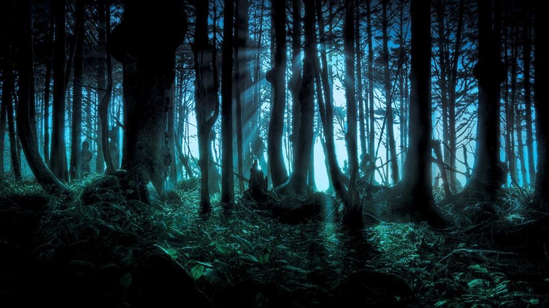 Halloween Woods